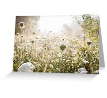 Morning Field Greeting Card
