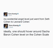 Cohen Scale by raimy