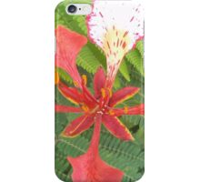 Flame Tree Blossom iPhone Case/Skin