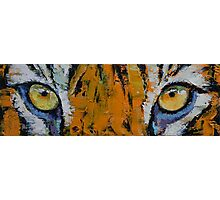 Tiger Eyes Photographic Print