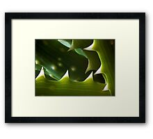 ©NS Green Thorns IAT Framed Print