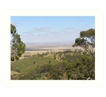 Views from Spring Gully Cons. Red Stringybark forest. Clare S.A. Art Print