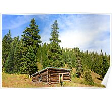 Lone Cabin - Aspen Colorado  Poster