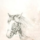 Chinese Zodiac - The Horse by Kirsten Glenwright