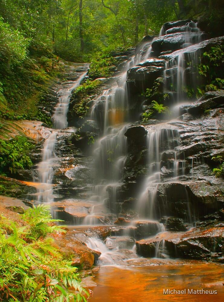 Sylvia Falls with ferns by Michael Matthews