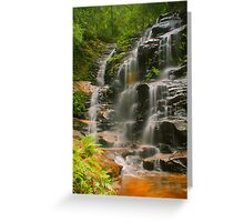 Sylvia Falls with ferns Greeting Card