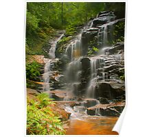 Sylvia Falls with ferns Poster