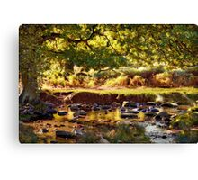 Autumn in the Lin Valley Canvas Print
