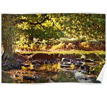 Autumn in the Lin Valley Poster