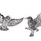 BIRDS by Sally Barnett