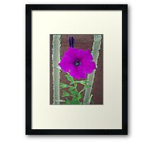 Up Against The Wall ~ Framed Print