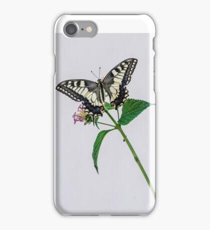 butterfly, Beautiful, flowers, color, bugs, papilio machaon,  iPhone Case/Skin