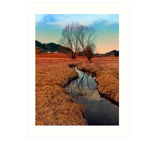 A stream, dry grass, reflections and trees | waterscape photography Art Print