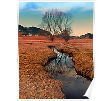 A stream, dry grass, reflections and trees | waterscape photography Poster