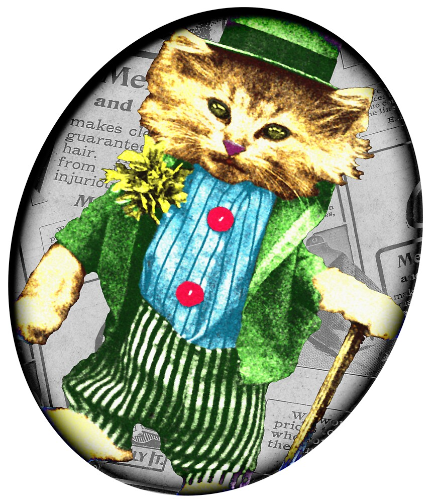 St Paddy cat by Rob Hopper
