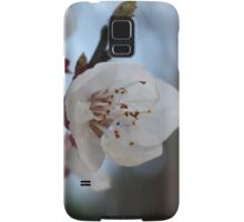 Close Up Apricot Blossom In Pastel Shades Samsung Galaxy Case/Skin