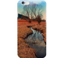 A stream, dry grass, reflections and trees | waterscape photography iPhone Case/Skin