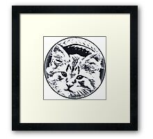 Straw Hat cat Framed Print