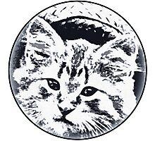 Straw Hat cat Photographic Print
