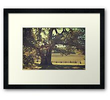 And I Smiled to Myself Framed Print