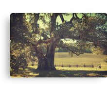 And I Smiled to Myself Canvas Print