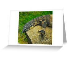 Sunbaking Perentie Greeting Card