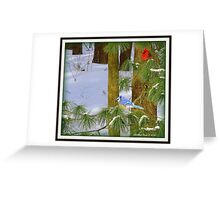 """""""Red, White & Blue"""" Greeting Card"""