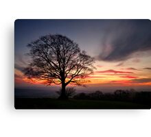 Hill Top Tree and Sunset Canvas Print