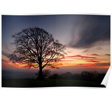 Hill Top Tree and Sunset Poster
