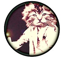 Candle Cat Photographic Print