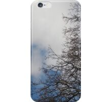 sky tree iPhone Case/Skin