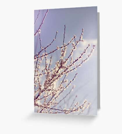 Spring is here again Greeting Card
