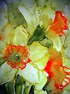 Spring Daffs. by Val Spayne