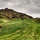Arthur's Seat by Tom Gomez