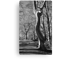Mugdock tree Canvas Print