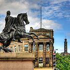 Duke of Wellington by Tom Gomez