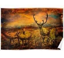 It's a Diorama Deer Poster