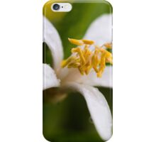 Lemon blossom iPhone Case/Skin