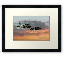 Harriers At Sunset Framed Print