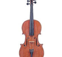 A Violin by Jennifer Gibson