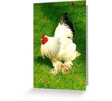 There goes that rooster... Greeting Card