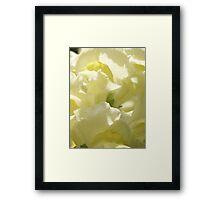 Blossom_1303 Framed Print