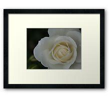 Blossom_1314 Framed Print
