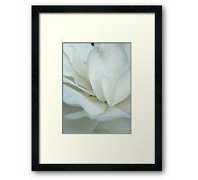 Blossom_1322 Framed Print