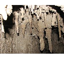 One of the Timbs Creek caves, Tarkine, western Tasmania Photographic Print