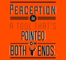 what is perception? by smauglocki