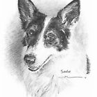 Black and white dog drawing by Mike Theuer
