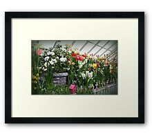 Flower Show Time! Framed Print