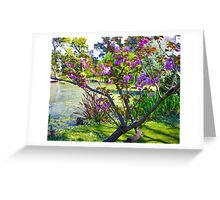 Pink blossoms at Ripponlea Greeting Card