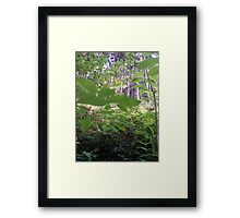 Forest_1323 Framed Print